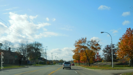 Autumn Sunday Drive - clouds, trees, Autumn, road, automobiles, cars, street light, blue skies, automobile, Fa11, street lights, golden yellow, blue