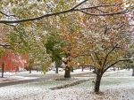 1st Snowfall of Autumn 2019