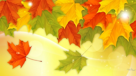 Leaves of Many Colors - Firefox theme, fall, autumn, orange, maple, colors, leaves, tree, bright, nature, season