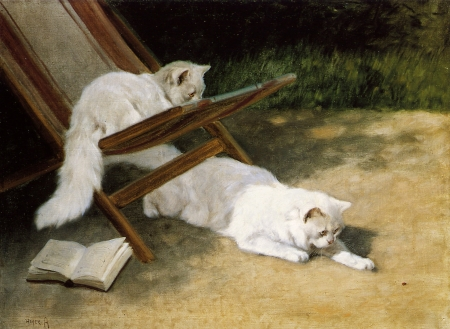 Persian Cats - garden, painting, cat, white, pisici, art, persian, vara, arthur heyer, summer, pictura