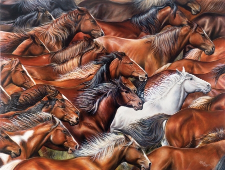Different Colored Horses - digital, art, herd, animals, running