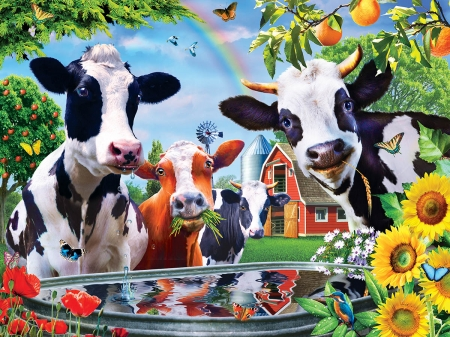 Moo  Love - white, cows, horns, sun, black, colors, bath, happy, bird, love, flowers, reflections