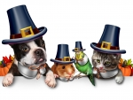 Happy Pets Giving