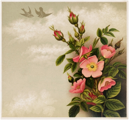 Happy Easter! - rose, wild, flower, easter, spring, pink, vintage, card