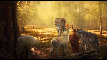 Raise your eyes to you fear - tiger, wolf, tigru, evgeny schukarev, yellow, man, monk, young, boy, fantasy, jungle, lup