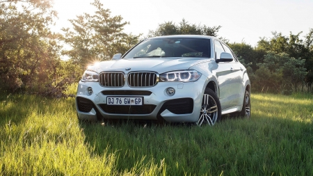 BMW X6 - german cars, suv, BMW X6, luxury