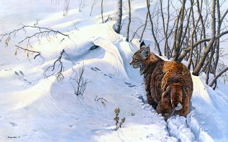 Lynx - pictura, lynx, cat, pisici, art, animal, iarna, winter, snow, wild, painting, john seerey lester, white