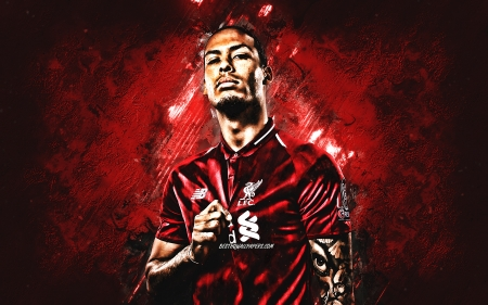 Virgil van Dijk - football, van dijk, virgil, soccer, red, defender, dutch, lfc, ynwa, sport, virgil van dijk, liverpool