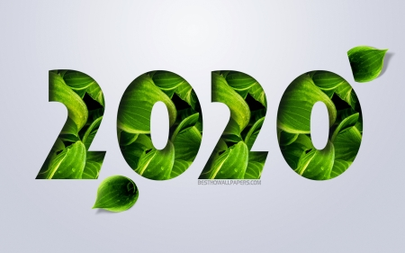 New Year 2020 - 2020, new year 2020, new year, numbers from green leaves, eco concepts, holidays, holiday, happy new year 2020, white background, 2020 year concept, 2020 new year, 2020 year