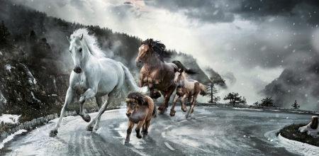 :) - cal, add, fantasy, commercial, horse, road, winter, iarna, advertise