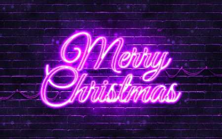 Merry Christmas - violet, happy new years concept, violet brickwall, holidays, christmas, 4k, christmas decorations, creative, violet merry christmas, merry christmas, xmas decorations, violet neon merry christmas