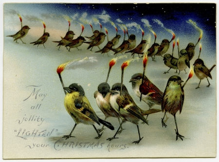 :) - card, vintage, christmas, craciun, bird, pasari