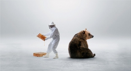 :) - urs, add, honey, bear, commercial, man, advertise