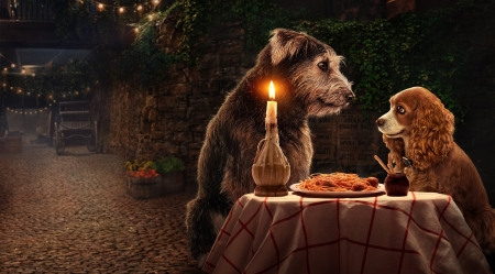 Lady and the Tramp (2019) - dog, disney, candle, romantic, movie, lady and the tramp, couple