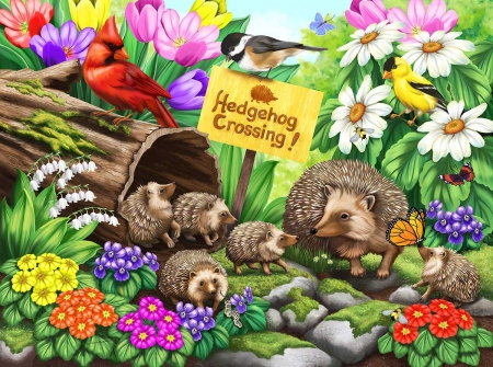 Hedgehog Crossing - life, wild, hegdehog, spiny, small, happy, creature