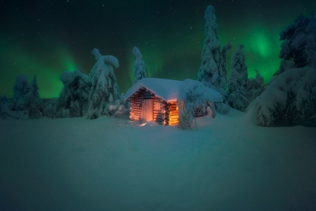 winter night - stars, hut, house, spruce, winter