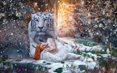 Winter Dream - tiger, girl, forest, snow, sunlight, flowers