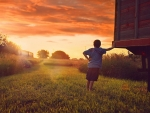 Young boy in a small field, looking at the sunset