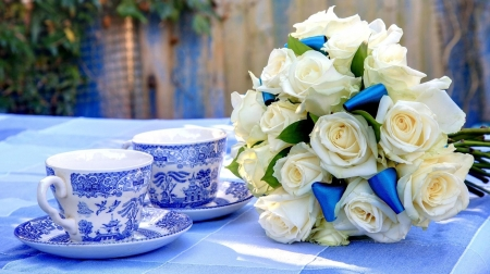 white roses - ribbon, photography, flowers, roses, white, blue, cups