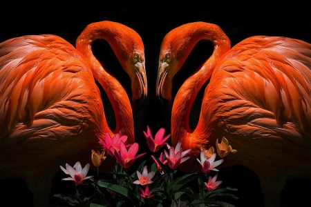 True Love - painting, flowers, birds, flamingoes