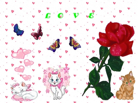 Cats and rose - cute, flowers, roses, cats, lovely