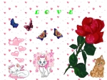 Cats and rose