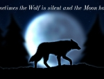Sometimes the wolf is silent and the moon howls