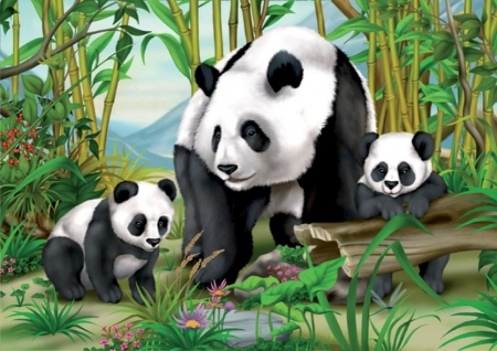 Panda Bears - white, china, two, black, bears, cubs, mother