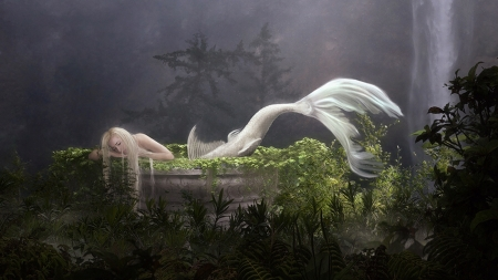 Albino Mermaid - enchanting, Mermaid, waterfall, white, Fantasy, Moss, Albino, forest, magical, mythical