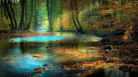 Forest River - leaves, sunrays, water, trees, autumn
