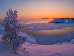 ~ Winter's Sunset