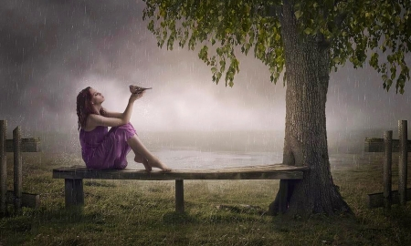 In The Rain - fantasy, Rain, cloudy, tree, bird, bench, Woman, softness, wet