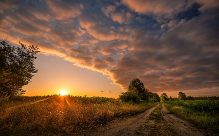 Nature Road Sunset - sunset, roads, nature, clouds, landscape