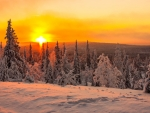 Fiery sunset in Lapland