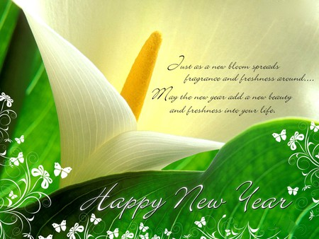 NEW YEAR MESSAGE - message, blossoms, HAPPY, new year