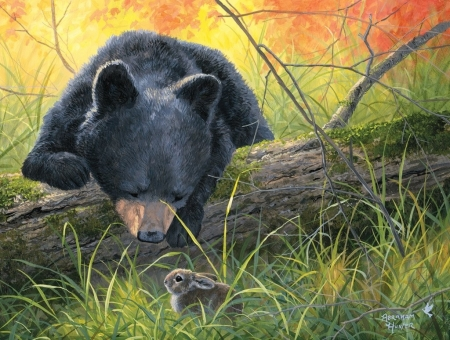 The discovery - art, rabbit, urs, bear, abraham hunter, painting, bunny, pictura