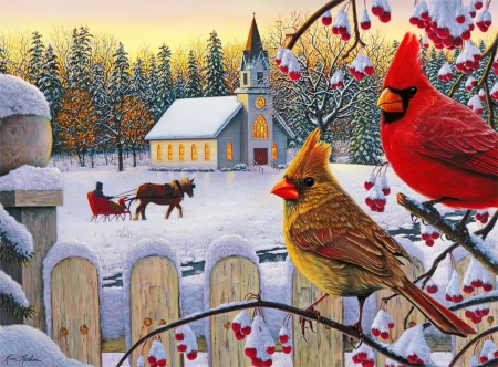 White Crimson morning - morning, fance, white, winter, art, sleigh, house, birds, beautiful, cardinals, gathering, snow, village