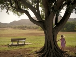 Little Girl and Tree