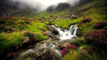 Scottish landscape - stream, foggy, mountains, moss, misty, nature, fog, mist, wallpaper