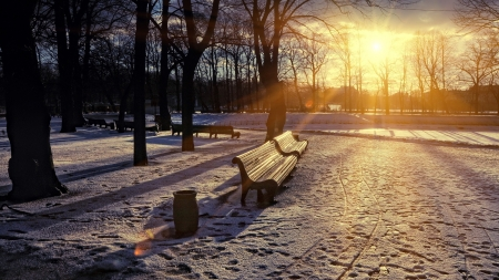 Snowy Park - trees, snow, benches, sunset, park, Winter