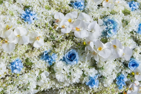 Flowers - summer, flower, skin, carpet, white, blue, rose, trandafir, vara, orchid, texture