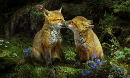 Foxlings In The Woods - Foxes, Animals, woods, Caress, forest, sweetness