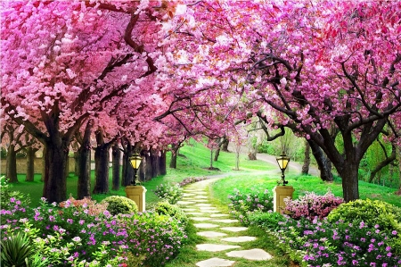 Colors of Spring - flowers, blossoms, path, trees, lamps