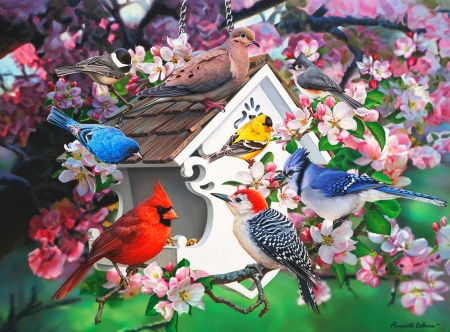 Among the apple blossoms - art, apple, pretty, birde, fun, beautiful, joy, cardinals, tree, gathering, birdhouse, flowers, blossoms, blooming