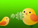Saint Patricks Birds