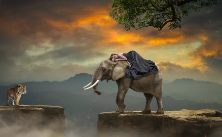 :) - elephant, fantasy, girl, tigru, tiger, creative, animal