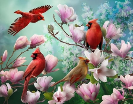 Four birds in flowers - cardinals, art, magnolia, four, gathering, flowers, birds, spring, beautiful