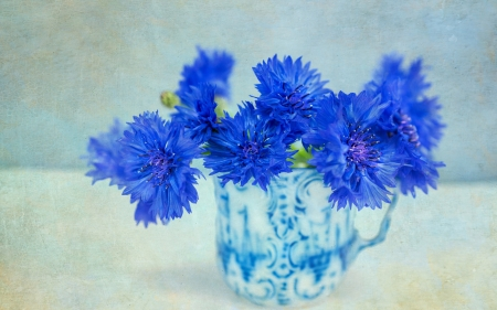 Cornflowers - blue, glass, vara, cornflower, bouquet, summer, vase