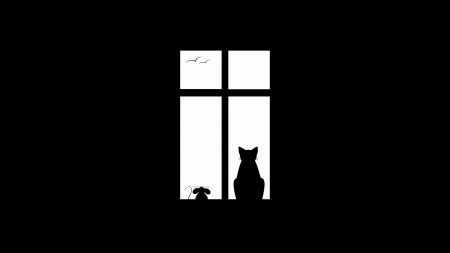 :) - window, mouse, black, white, cat, pisici, soricel, animal, year of the rat