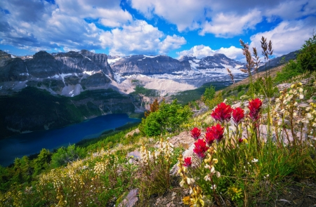 Landscape with mountain and lake - wildflowers, slope, beautiful, lake, hills, rocks, view, spring, sky, mountain, summer